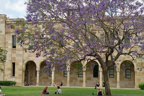 Campus der University of Queensland