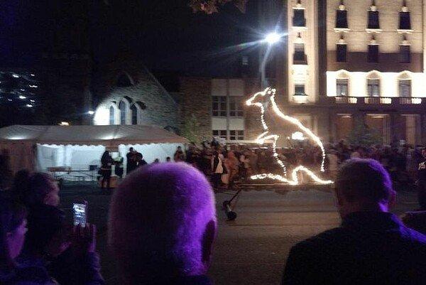 Fringe Festival Adelaide