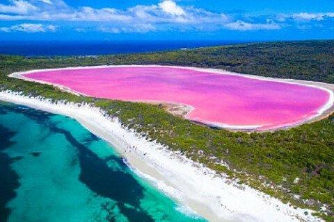 Ein pinker See in Australien