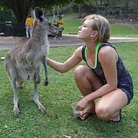 Das Känguru hautnah erleben