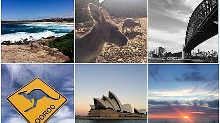 Collage Studium in Australien