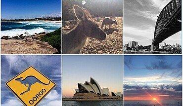 Collage Studium in Australien