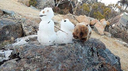 Schnemännchen