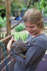 Kuscheln mit Wombat