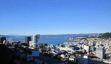 Erfahrungsbericht Bannert Wellington Neuseeland