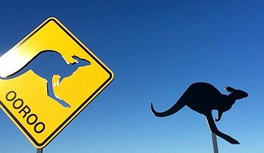 Kangaroo signs
