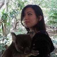 Profilbild mit Koala