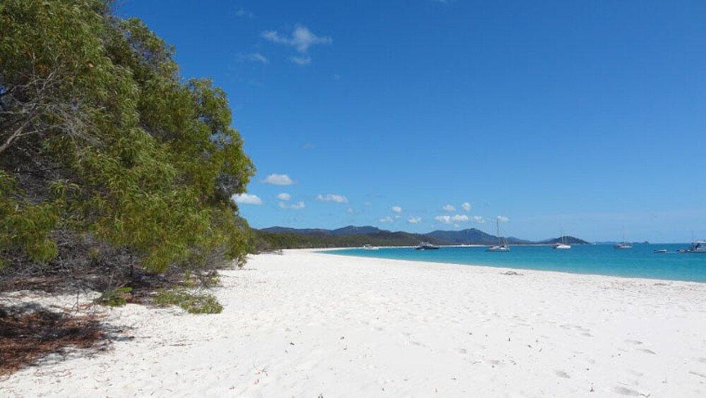 Whitehaven Beach - Auslandssemester Australien