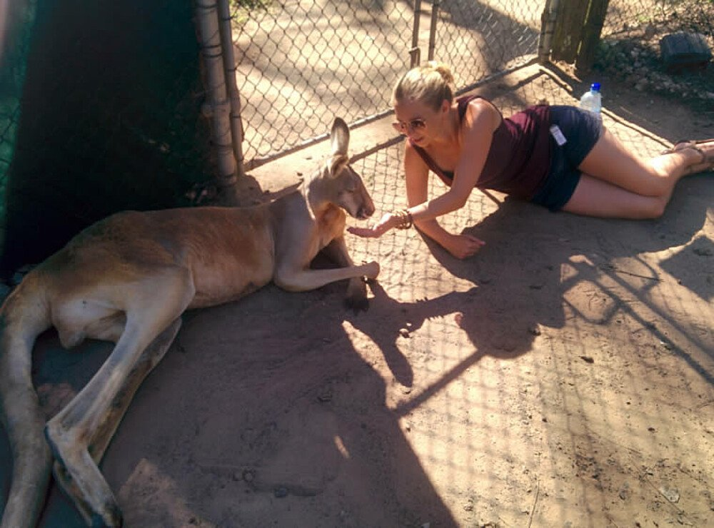 Relaxen mit Känguru - Australien
