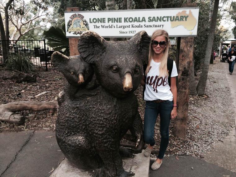 Erfahrungsbericht Auslandssemester Queensland - Koala Sancturary