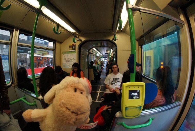 Tram Australien