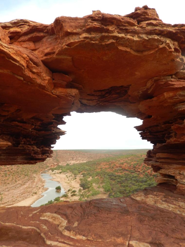 Nature Fenster - Auslandssemester Australien