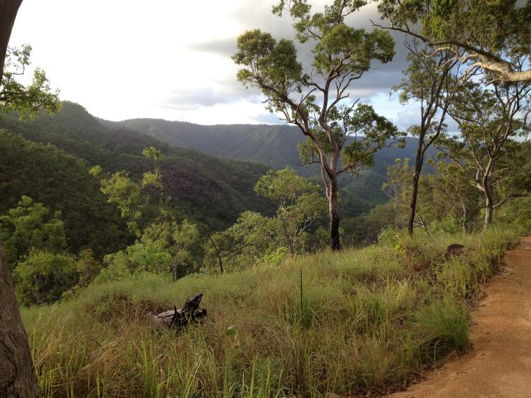 Dschungel - Gastsemester Australien