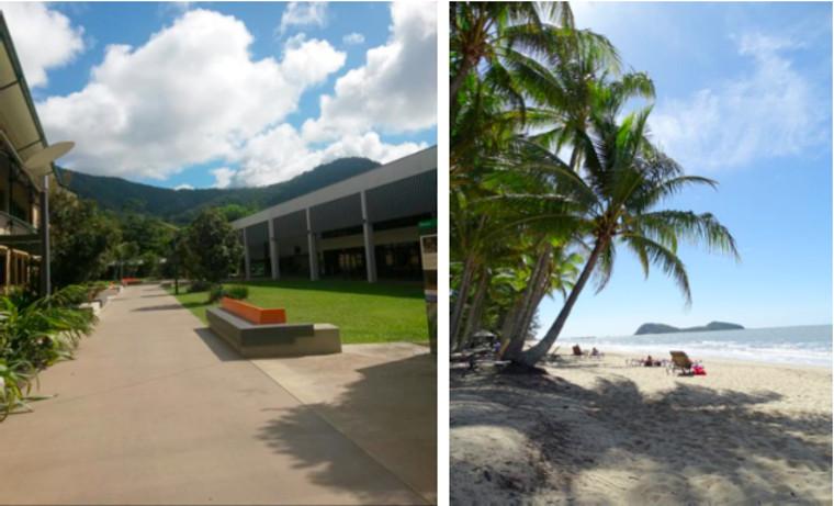 JCU Campus & Palm Cove
