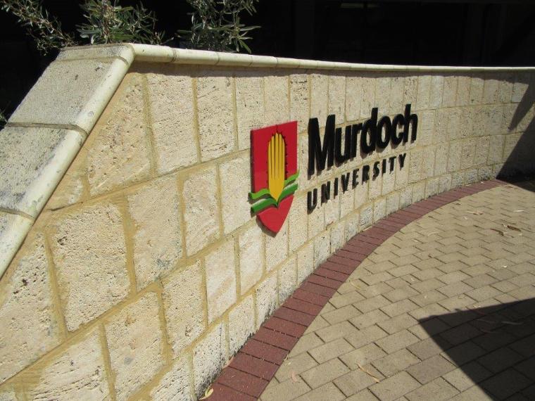 Murdoch University - Auslandssemester Australien