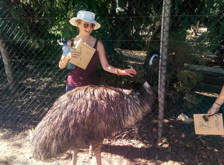 Emu - Auslandssemester Australien
