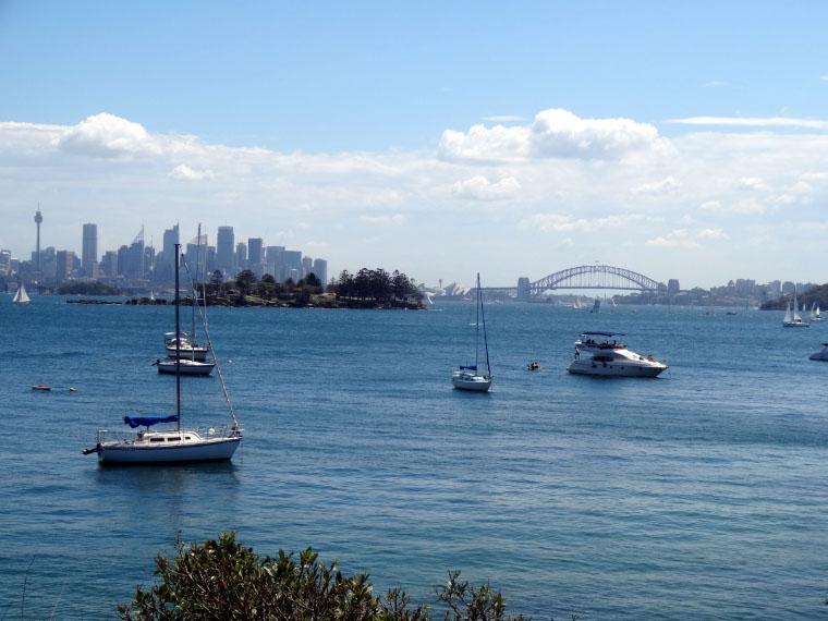 Ausblick vom Milk Beach - Masterstudium in Australien