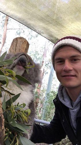 Student und Koala