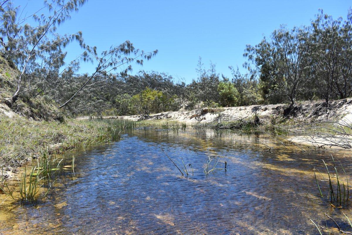 Natur in Australien
