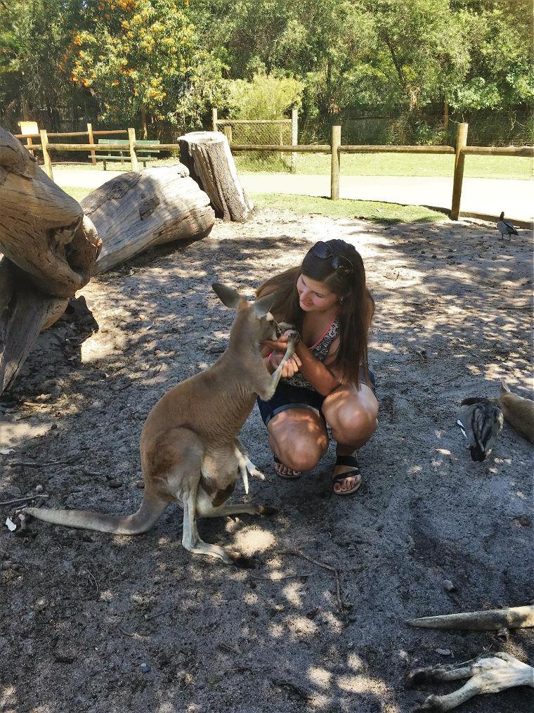Studentin mit Känguruh