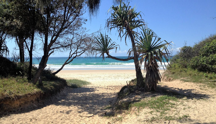 Strand in North Stradbroke Island