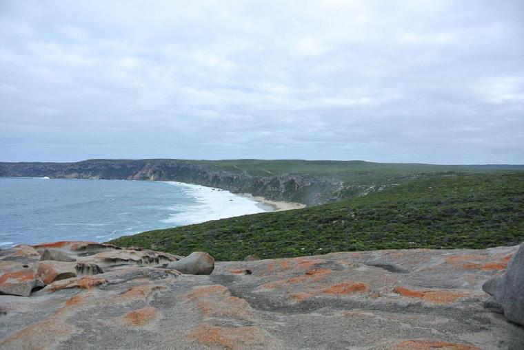 Erfahrungsbericht Mueller van Ishem Remarkable Rocks Küste