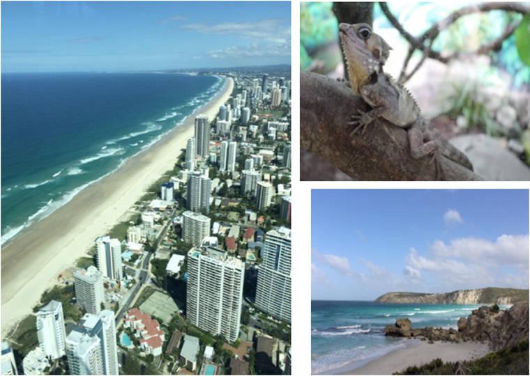Erfahrungsbericht Optensteinen Australien Studium
