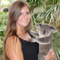 Erfahrungsbericht Spilke Koala Australien