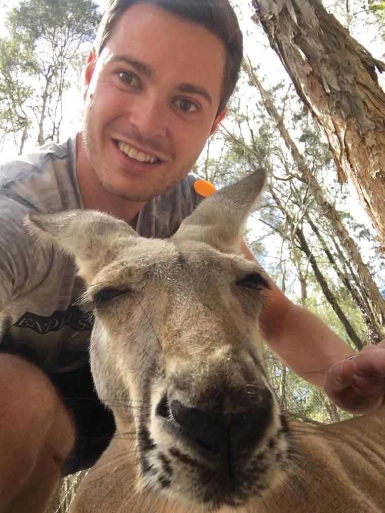 Erfahrungsbericht Vordermeier mit Kangaroo