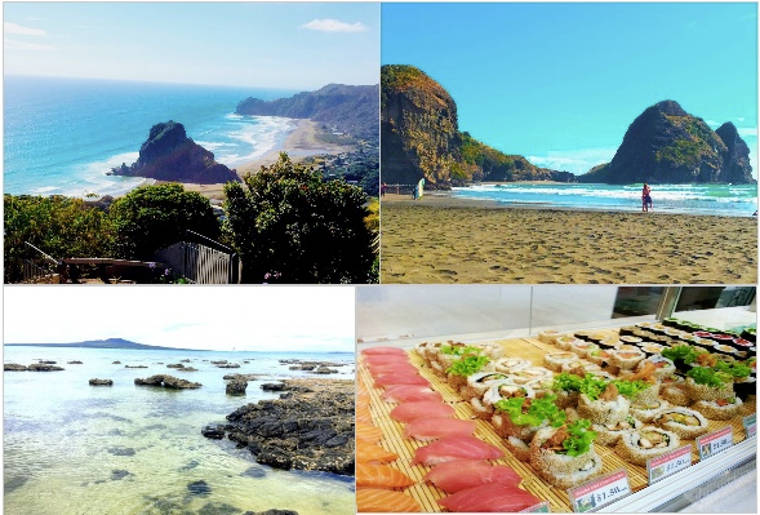 Studium in Neuseeland