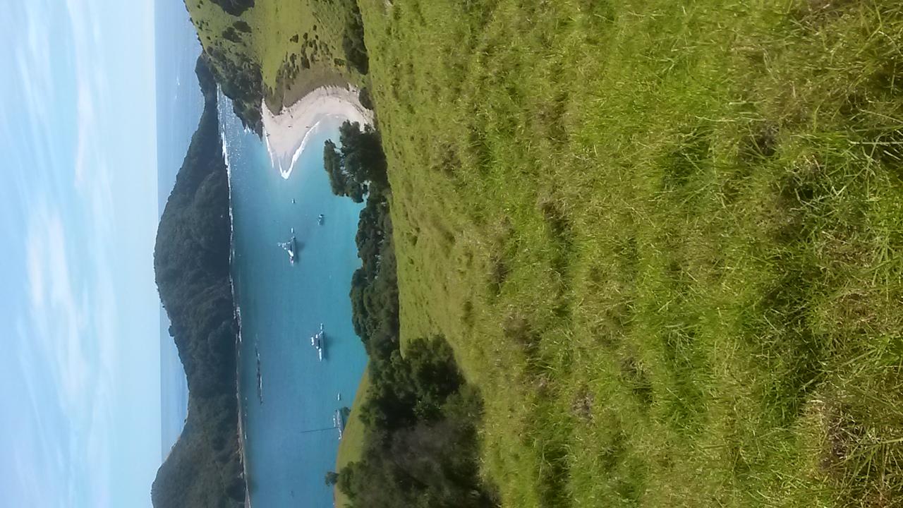 Bay Neuseeland