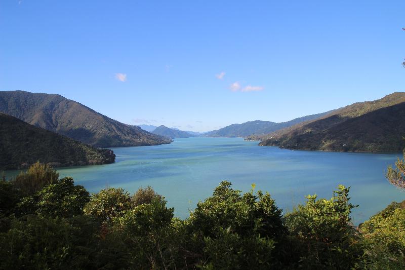 Ausblick Neuseeland