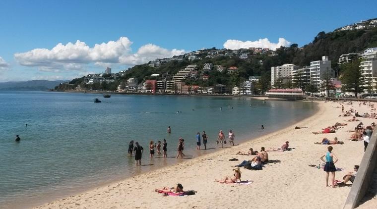 Hafenpromenade Auslandssemester Neuseeland